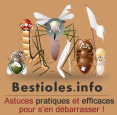 Le site pour se débarrasser des moustiques, puces et autres nuisibles